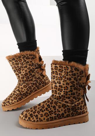 Леопардові Сноубутси