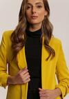 Жовтий Піджак