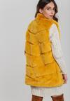Жовтий Жилет