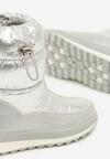 Серебряные Снегоходы